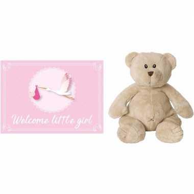 Kraamcadeau beren knuffel welcome little girl wenskaart /ansichtkaart