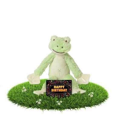Verjaardagscadeau knuffel kikker groen gratis wenskaart kopen