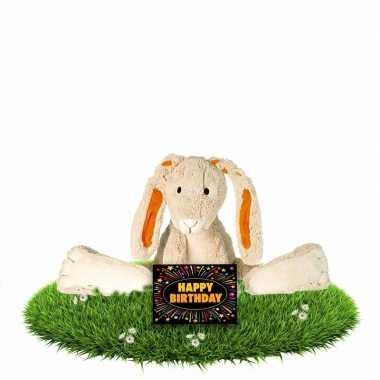 Verjaardagscadeau knuffel konijn/haas twine gratis wenskaart kopen