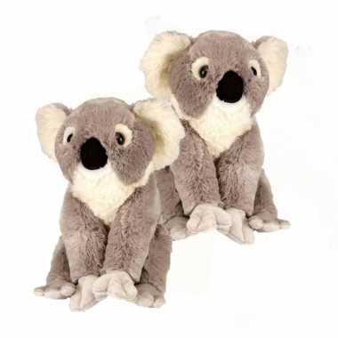 X stuks koala knuffelbeer kopen