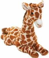 Giraffe knuffels liggend kopen